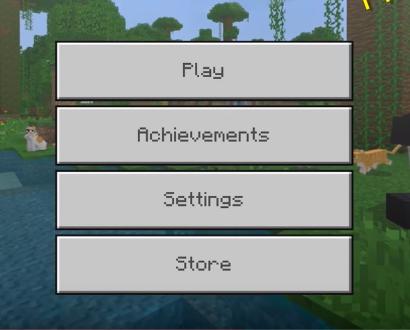 Minecraft PE server