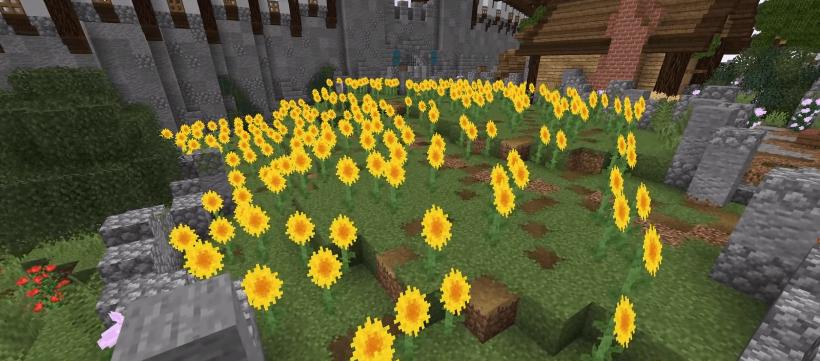 sunflower field - Ideas to build in Minecraft