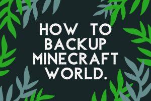 How to Backup Minecraft World