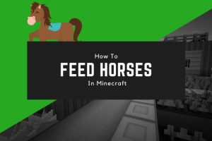How to Feed Horses in Minecraft